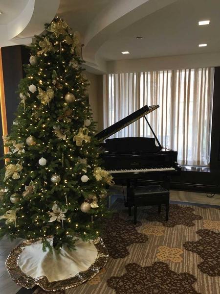 Christmas-Tree-Nursing-Home-Event-1